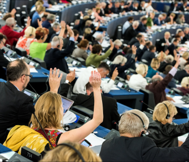 Vote at the European Parliament