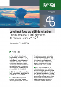 briefing_couv_fr_charbon_maem_avril2021_page_1.png