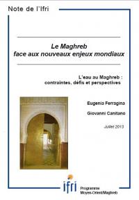 L'eau au Maghreb : contraintes, défis et perspectives