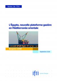 couv_egypte_plateforme_gaziere_ba_page_1.jpg