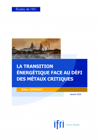 couv_lepesant_transition_energetique.jpg