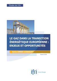couv_scg_gaz_transition_energetique_page_1.jpg