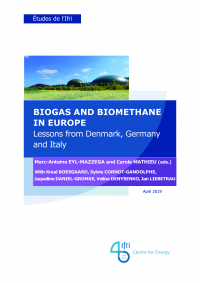 Biogas and Biomethane in Europe: Lessons from Denmark