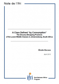 "A class defined ""by consumption"":  The grocery-shopping practices of the Lower-Middle Classes in Johannesburg, South Africa"