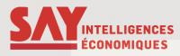image_logo_say.png