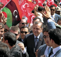 Turkey and the Arab World: Natural Partners?