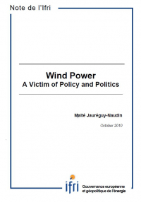 Wind  Power: a Victim of Policy and Politics?