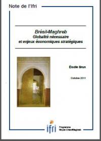 Brésil - Maghreb : Globalité nécessaire et enjeux économiques stratégiques