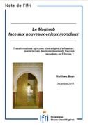 Transformations agricoles et stratégies d'influence : quelle lecture des investissements fonciers saoudiens en Éthiopie ?
