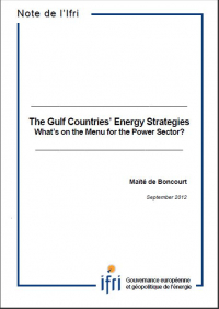 The Gulf countries' Energy Strategies. What's on the Menu for the Power Sector?