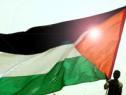 ifri_thd_palestine.jpg
