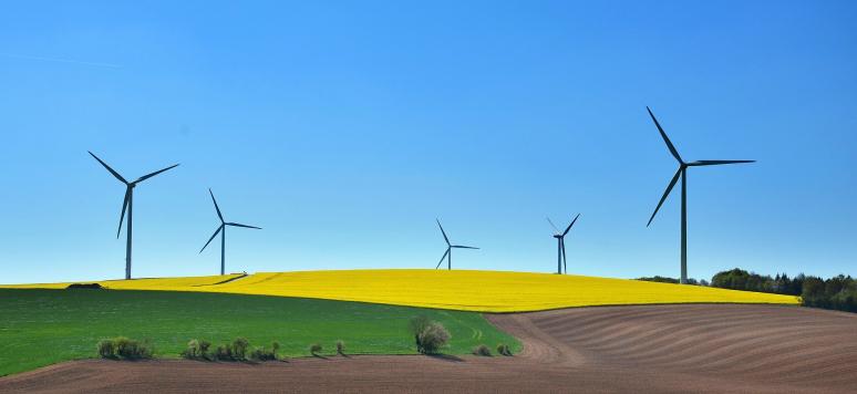 Developpement durable et transition ecologique