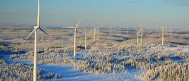 Bjorkhojden wind farm in the Swedish forest - Shutterstock/Mrwhiterat