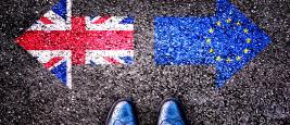 brexit_-_article_vivien_-_revue_banque_-11_octobre_2016_-_site_twitter.png