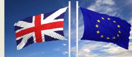 capture_brexit_drapeaux.jpg