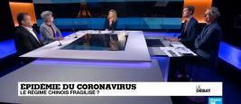 francoise_nicolas_ifri_france_24.jpg