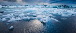 glacier_cop_24.jpg