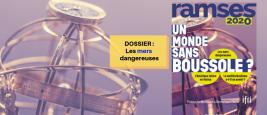 header_ramses_2020_-_dossier_mers.png