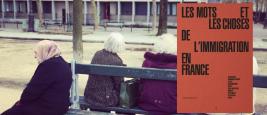 ifri_les_mots_et_les_choses_de_limmigration.jpg