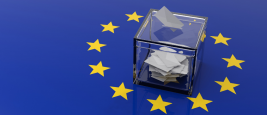 image_site_-_etude_collective_-_elections_europeennes.png