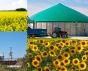 visuel_michel_cruciani_bioenergie.png
